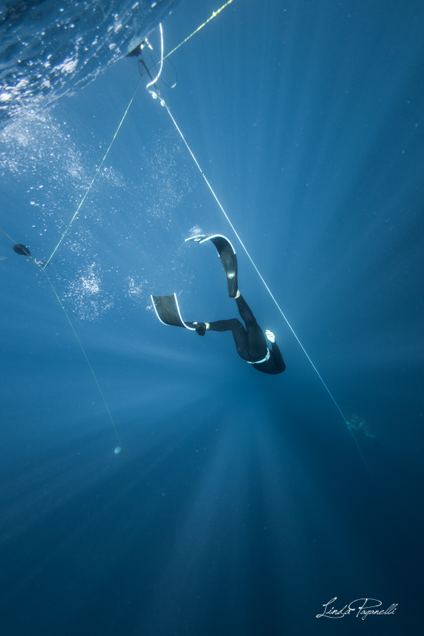 freediving course package
